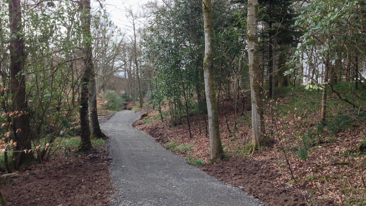 NEW Woodland Walks